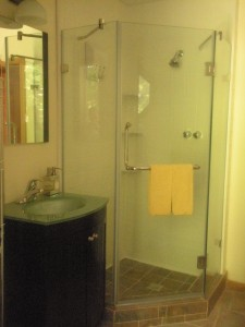 tt glass shower (2)